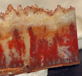 Carey Plume Agate 8.2oz Lapidary Display collection slab - radiantrocksct