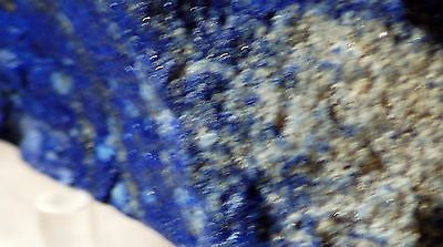 Afghan Lapis Lazuli 7.6 ounces  lapidary rough (215 grams) - radiantrocksct