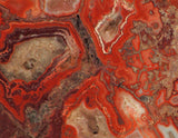 Red Crazy Lace agate Lapidary Slab 5.2oz Great colors /patterns (147 grams) - radiantrocksct