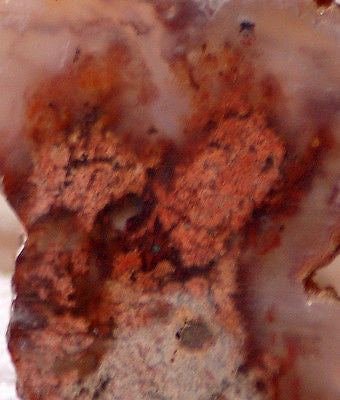 Carey Plume Agate 0.79 oz Lapidary  cab slab good plume 21.8 grams - radiantrocksct