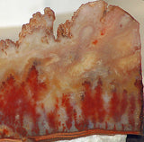Carey Plume Agate 7.4oz Lapidary Display collection slab - radiantrocksct