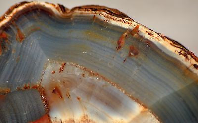 Piranha Brazilian banded Agate rough ~2 lbs - windchimes, sun catchers 913 grams