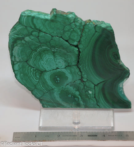 Chatoyant Congo Malachite lapidary slab 15.4 oz (440 grams)