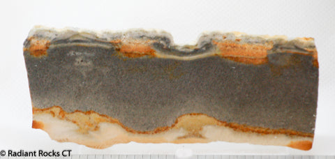Chicken Track Picture Jasper slab 2.2 oz (65 grams)