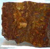 Chinese Pietersite Gold lapidary slab 12.4 oz  (350 grams)