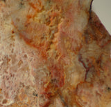 Feather Ridge Plume Agate  slab 3.8 oz (110 grams) - radiantrocksct