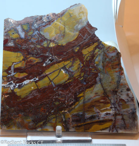 Marston Ranch Petrified Wood Replacement - Radiant Rocks CT
