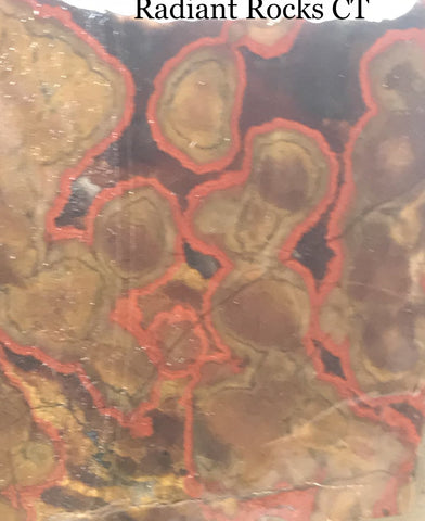 Morgan Hill Poppy Jasper Lapidary Slab 2.2 oz (65 grams) - radiantrocksct