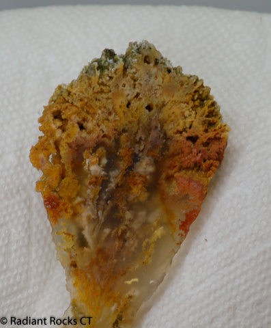 Northridge Plume Agate lapidary flower 2.6 oz (75 grams)