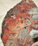 Red Crazy Lace Agate Lapidary heel Slab 5.6 oz (160 grams) - radiantrocksct
