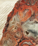 Red Crazy Lace Agate Lapidary Slab 3.2 oz (85 grams) - radiantrocksct