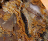 Northridge Plume Agate 4.4 oz face cut lapidary slab great plumes and agate