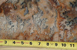 Graveyard Point Plume Agate 50 lb faced rough Museum piece beauty!! - radiantrocksct