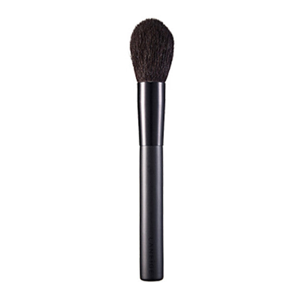 The Professional Powder Brush