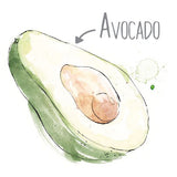 Avocado Natural Skincare Ingredient