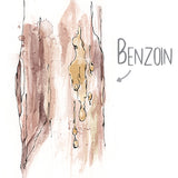 Benzoin Natural Skincare Ingredient