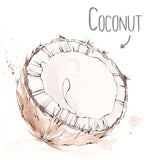 Coconut Natural Skincare Ingredient