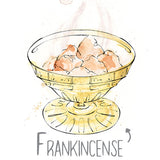 Frankincense Natural Skincare Ingredient