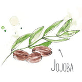Pure Jojoba Natural Skincare Ingredient