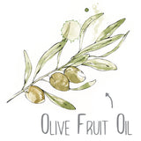 Olive Fruit Oil Natural Skincare Ingredient