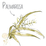 Palmarosa Natural Skincare Ingredient