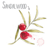 Sandalwood Natural Skincare Ingredient
