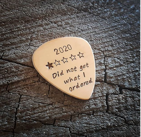 2020 1 star review pick - bronze guitar pick
