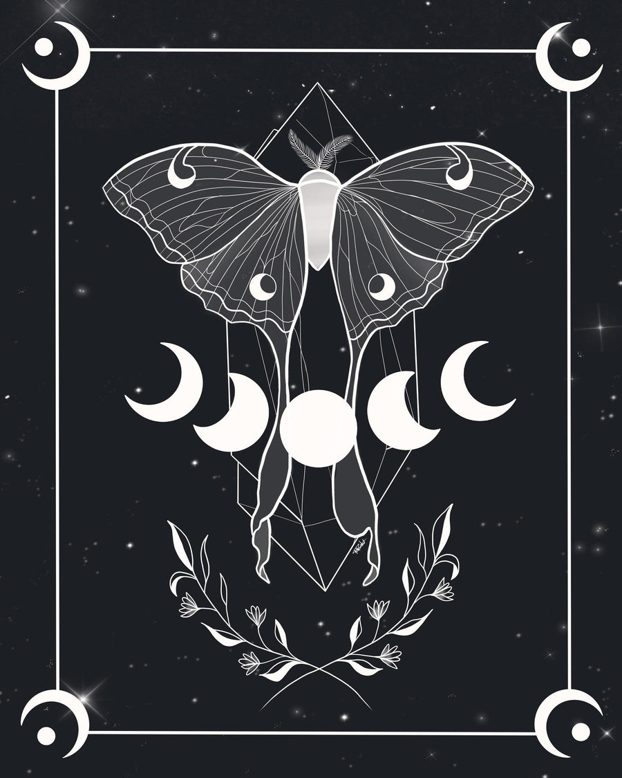 Illustration - Papillon de lune