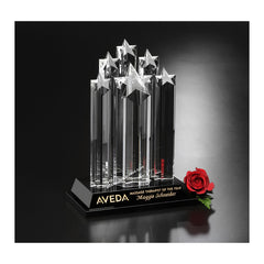 6919 Optic Crystal Starburst Award - American Trophy & Award Company - Los Angeles, CA 90022