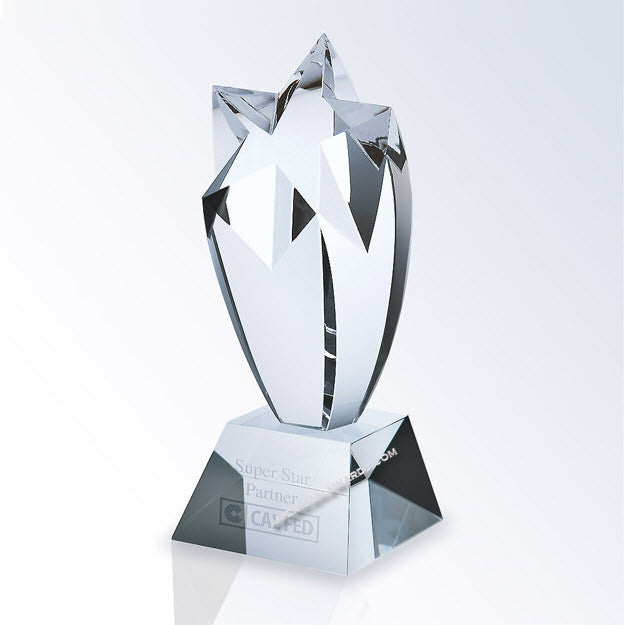 C364 Crystal Rising Star Award