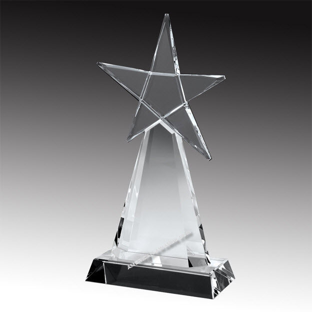 E2956 Evolving Star Crystal Award