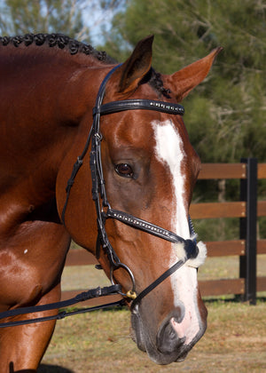 Sheepskin and leather Grackle bridle Riley