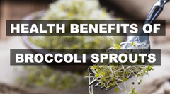 Health Benefits of Broccoli sprouts