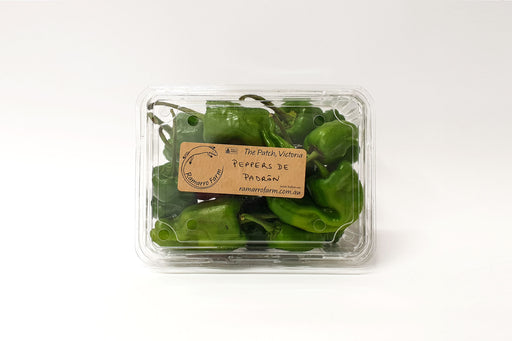 Ramarro Farm Padron Peppers 250g