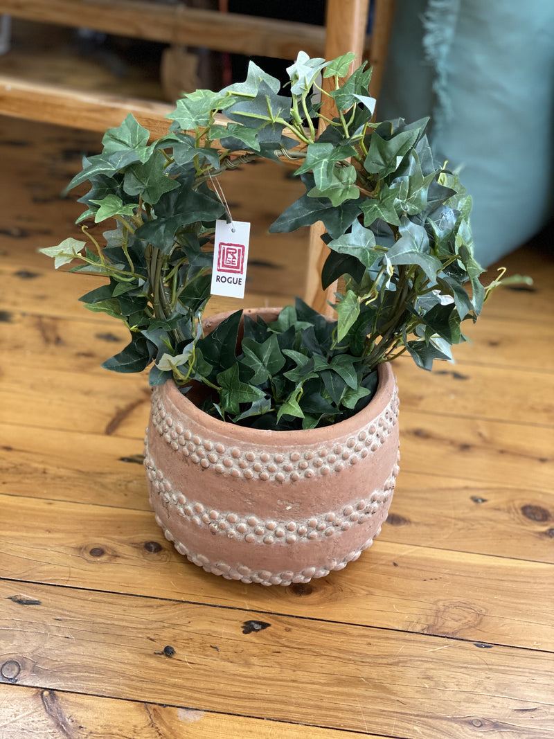 Ivy Ring Garden Pot