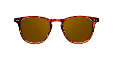 WALL SHINE TORTOISE - AMBAR POLARIZED