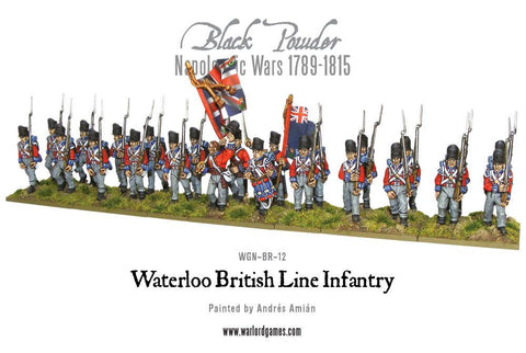 Waterloo British Line Infantry