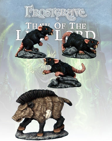 Boar & Giant Rats