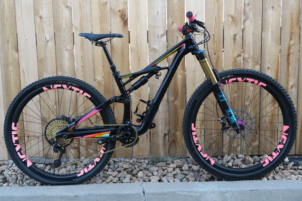 2017 S-WORKS ENDURO CUSTOM 29""