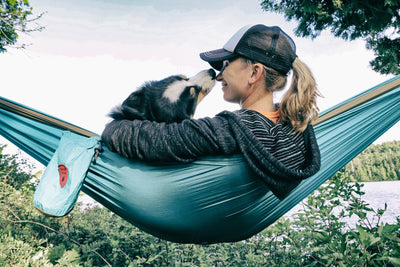 Dog Hammocking Tips: Hang With Your Favorite Pup!