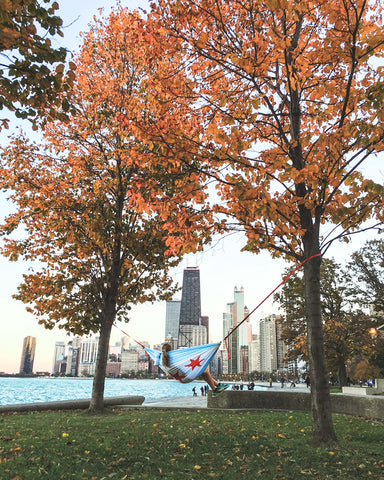 hammocking at a park in Chicago @KBUCKLANDPHOTO