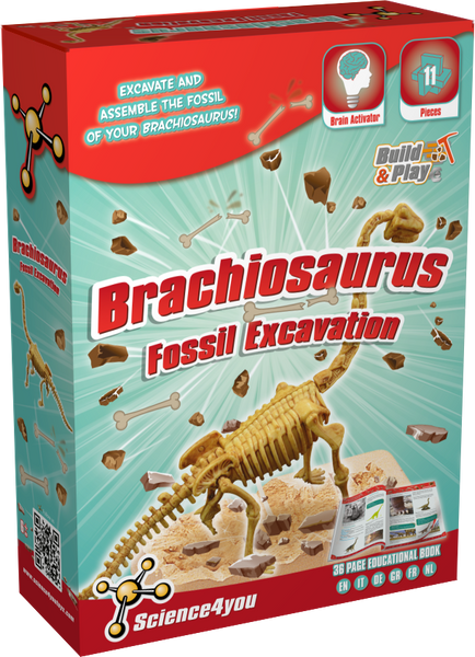 Fossil Excavation Brachiosaurus Educational Toy front side