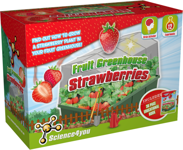 Strawberries Greenhouse Educational Kit font side
