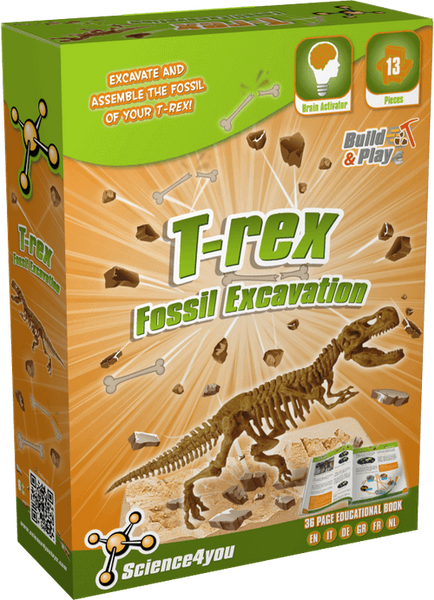 Fossil Excavation Tyrannosaurus Rex Educational Toy front side