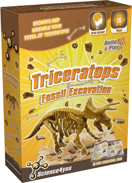 Fossil Excavation Triceratops Educational Toy front side