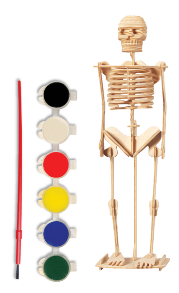 3D Wooden Skeleton Puzzle Toy