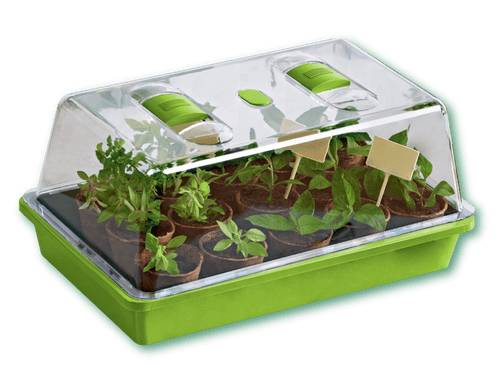 Ecological Greenhouse Educational Kit Toy