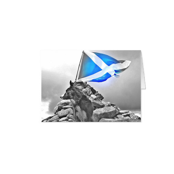 Blaze A5 blank note cards b&w with colour Saltire - 10 with matching envelopes