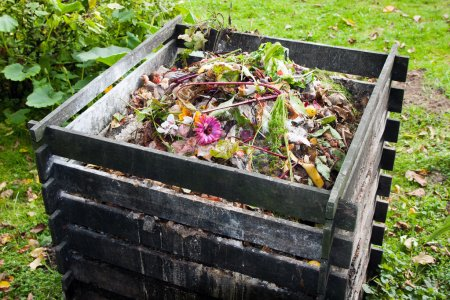 Want to start composting in 2020? Here's What You Need to Know.