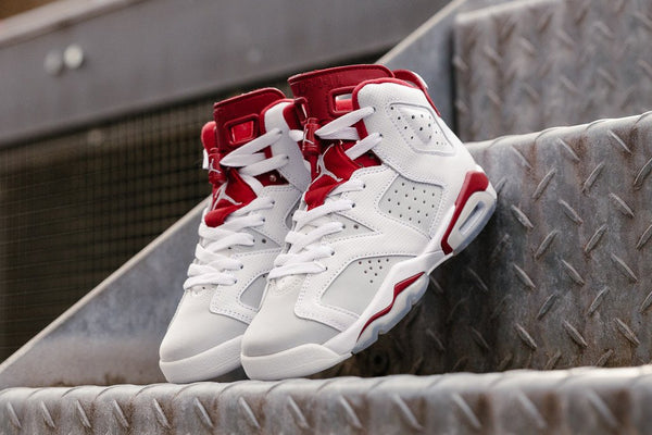 Air Jordan 6 Retro GS 384665-113